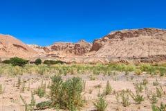 阿塔卡马沙漠干旱的平的土地山 库存图片