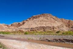 阿塔卡马沙漠干旱的风景和河 免版税库存照片
