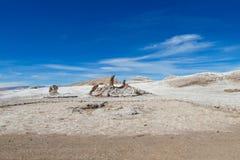 阿塔卡马沙漠瓦尔de la月/月球 免版税库存图片