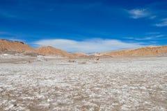 阿塔卡马沙漠盐平的风景 库存图片