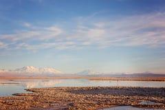 阿塔卡马沙漠盐盐水湖 免版税图库摄影