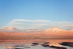 阿塔卡马沙漠盐盐水湖 免版税库存图片