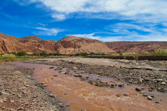 阿塔卡马沙漠肮脏的河 免版税库存照片