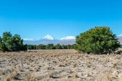 阿塔卡马沙漠风景被弄脏的背景与积雪覆盖的安地斯山的火山、盐舱内甲板和一些植被的在天际,智利 库存照片