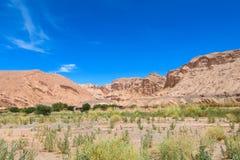 阿塔卡马沙漠风景 免版税图库摄影