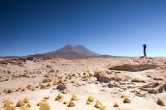 阿塔卡马沙漠,玻利维亚 库存图片