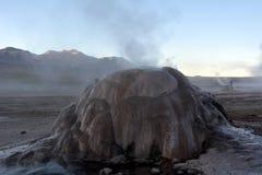 阿塔卡马沙漠-在El Tatio的喷泉在智利 免版税库存照片