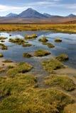 阿塔卡马沙漠-智利 库存照片