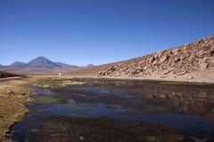 阿塔卡马沙漠 免版税库存照片