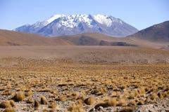 阿塔卡马沙漠 免版税库存图片
