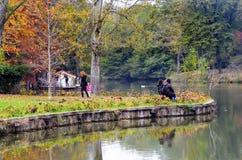 阿塔图尔克树木园 在湖附近的秋天树 免版税库存照片