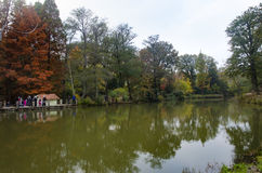 阿塔图尔克树木园 在湖附近的秋天树 库存照片
