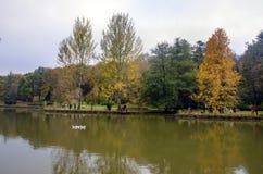 阿塔图尔克树木园 在湖附近的秋天树 库存图片