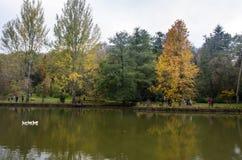 阿塔图尔克树木园 在湖附近的秋天树 免版税图库摄影