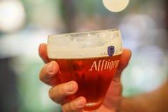 阿夫利赫姆修道院比利时红色啤酒 图库摄影