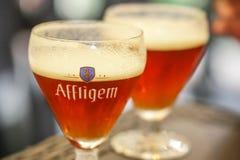 阿夫利赫姆修道院比利时红色啤酒 免版税库存图片