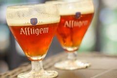 阿夫利赫姆修道院比利时红色啤酒 免版税图库摄影