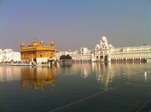 阿姆利则大厦包括整个金金黄印度叶子寺庙 免版税图库摄影