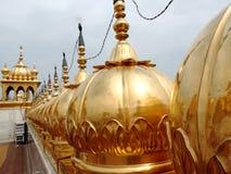 阿姆利则金黄印度日落寺庙 图库摄影