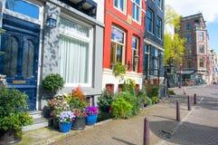 阿姆斯特丹住宅区在有自然花的进城在大厦之外 荷兰 免版税库存图片