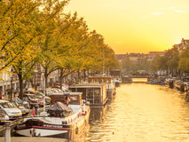 阿姆斯特丹城市场面在晚上 免版税库存图片