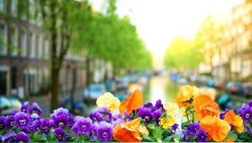 阿姆斯特丹春天 免版税库存图片