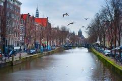 阿姆斯特丹老城镇 免版税库存照片