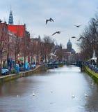 阿姆斯特丹老镇街道 库存照片