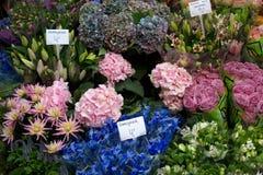 阿姆斯特丹花市场 库存照片