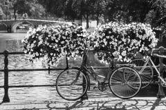 阿姆斯特丹花自行车BW 免版税库存照片