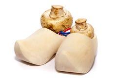 阿姆斯特丹鞋子 免版税库存照片