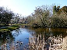 阿姆斯特丹,荷兰- 2016年3月13日:Vondelpark池塘sce 免版税图库摄影