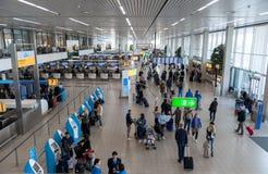 阿姆斯特丹, NETHERLAND - 2017年10月18日:与乘客的国际阿姆斯特丹史基浦机场内部 KLM登记区域 de 免版税库存图片