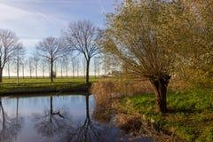 阿姆斯特尔芬,秋天时间运河  库存照片