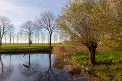 阿姆斯特尔芬,秋天时间运河  免版税库存照片