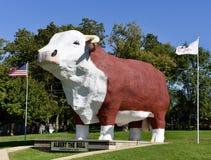 阿尔伯特公牛 库存图片
