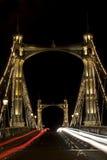 阿尔伯特桥梁伦敦晚上 库存图片