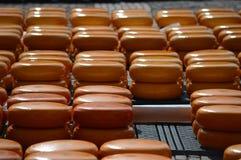 阿尔克马尔乳酪市场荷兰 库存照片
