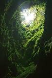 阿尔加做在Terceira海岛,亚速尔群岛上的Carvao洞 免版税库存照片