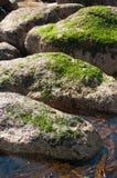 阿尔加罗沃海滩 免版税库存照片