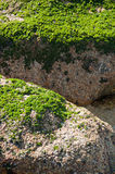 阿尔加罗沃海滩 免版税库存图片