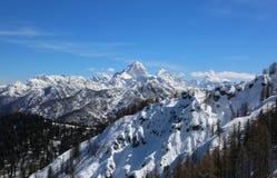 阿尔卑斯全景从Lussari登上的在这个区域电话 库存图片