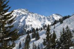 阿尔卑斯全景 库存照片