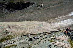 阿尔卑斯冰川木grossglockner的台阶 图库摄影