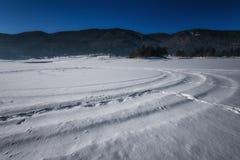 阿尔卑斯包括房子场面小的雪瑞士冬天森林 多斯帕特水坝在一个晴朗的冬日 斯诺伊童话在保加利亚 库存图片