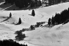 阿尔卑斯包括房子场面小的雪瑞士冬天森林 多斯帕特水坝在一个晴朗的冬日 斯诺伊童话在保加利亚 库存照片