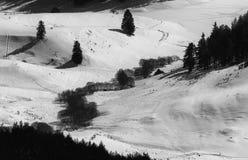 阿尔卑斯包括房子场面小的雪瑞士冬天森林 多斯帕特水坝在一个晴朗的冬日 斯诺伊童话在保加利亚 免版税库存照片