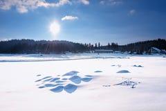 阿尔卑斯包括房子场面小的雪瑞士冬天森林 Shiroka Polyana水坝在一个晴朗的冬日 斯诺伊童话在保加利亚 免版税库存照片