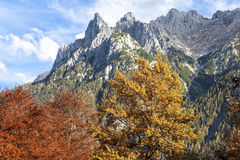 阿尔卑斯在秋天 免版税库存照片