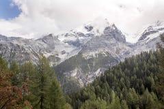 阿尔卑斯在高度的夏天1986年,意大利 免版税图库摄影